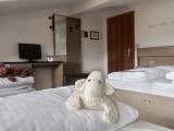foto-camere-hotel-scoiattolo-29