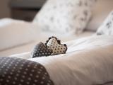 dettagli-hotel-scoiattolo-12